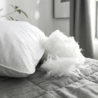 Bejirog 北极绒 羽丝绒护颈枕头 单只装