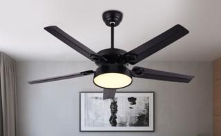 飞稳 北欧风扇吊灯 黑色铁5叶 42寸三色变光+遥控