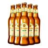 青岛啤酒 全麦白啤  11度 330ml*12瓶 54元包邮(需用券)