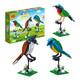 BanBao 邦宝  5123 鸟类的认知积木