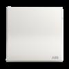 ABB 轩致系列  AF125 一开双控 *4件 61.4元(需用券,合15.35元/件)