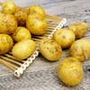城市园丁 新鲜土豆 马铃薯洋芋 4.5kg