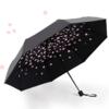 C'mon 樱花伞  A1616 遮阳防晒黑胶伞