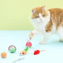 多宠 猫玩具套装 6件套