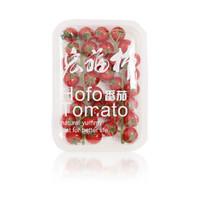 宏福农业 樱桃番茄 双串压膜装 400g 籽粒饱满 满口爆浆 荷兰原种 无土栽培