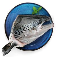 SOLID STANDARD 纯色本味 冷冻智利三文鱼头(大西洋鲑)整只 烧烤 400g/袋