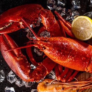 星河湾海鲜礼盒大礼包现货生鲜 10种食材 2988型(含波士顿龙虾、鲍鱼)自营海鲜水产