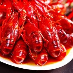 星农联合 红小厨麻辣小龙虾 4-6钱/只 650g 净重500g *3件