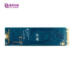 紫光存储(UNIC MEMORY) 512GB SSD固态硬盘 P100系列 M.2接口(NVMe协议)  三年质保