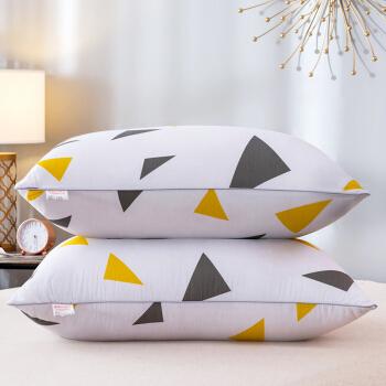 Bejirog 北极绒 纤维枕 (记忆碎片、单人、48*74cm、一只装)