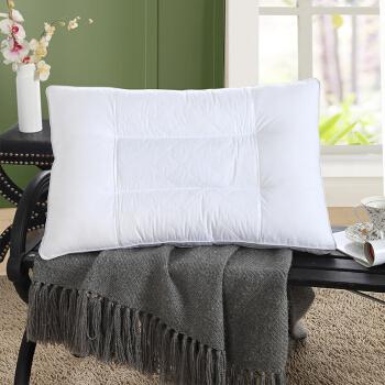 TEVEL 堂皇家纺 草本枕头 (白色、单人、48*74cm 、一只装、草本枕)