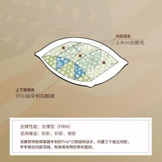 Pacific Coast 派赛菲特 22301 白鹅绒枕芯 (白色、单人、48*74cm、单支装、羽绒枕)