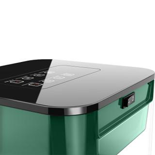 益多YD-T9-2200家用多功能富氧果蔬消毒机活氧机 果蔬肉类清洗机 果蔬解毒机农药分解净化机 智能版