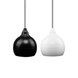 先科(SAST)D3 平面网同轴喇叭 吸顶音响吊顶悬挂天花壁挂吊球餐厅店铺音箱喇叭(黑色)