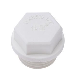 伟星 白色环保PPR20 4分配件 管材管件 PPR水管配件水暖管件 管堵20/4分(配1/2丝口使用) 白色(25个/袋)