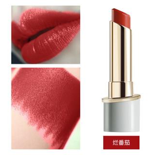 美颜秘笈(BS)口红持久保湿不脱色不沾杯唇膏唇彩防水口红 烂番茄色3.2g