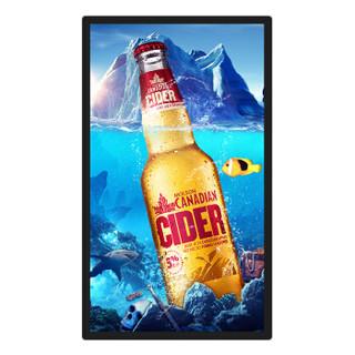 欧罗宝视22英寸壁挂安卓网络版广告机  高清电子海报 液晶楼宇数字标牌