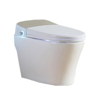 杉本(Sugimoto)智能马桶一体机多功能即热式座便器自动冲水墙排马桶634