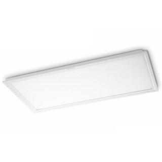 PHILIPS/飞利浦 LED面板灯 37058/300*600/  22W 白光