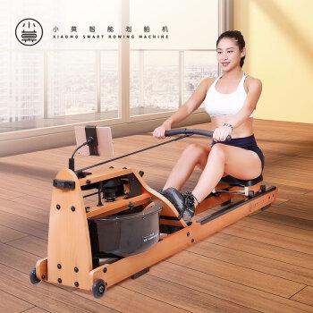 小莫 智能划船机 Pro (木、水阻型)