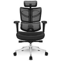 Ergomax 迩高迈思  Evolution畅享版 人体工学电脑椅 (金属)