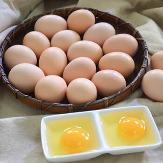 百年栗园 散养柴鸡蛋48枚/盒 新鲜鸡蛋红色礼盒装