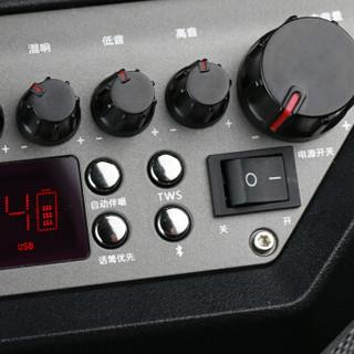 万利达(malata)S12 广场舞音响 12英寸户外移动音箱 拉杆音响无线蓝牙 大功率低音炮 伴唱消原音带麦克风