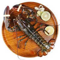 Gfresh加拿大进口鲜活波士顿龙虾450g-550g 1只 海鲜水产