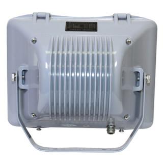 TORMIN/通明电器 电厂石油化工制药厂防眩通路灯 ZY8100-J70 70W