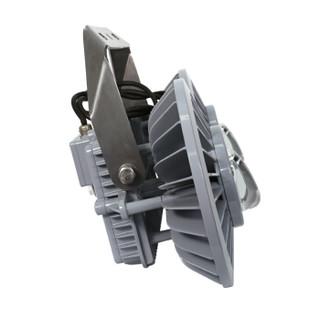 TORMIN/通明电器 LED港口码头工业照明灯 BC9309SH2-L300 300W