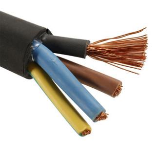 金山(JINSHAN)国标中型橡套线 软橡套线 电线 电缆 YZ 4*4 100米/盘