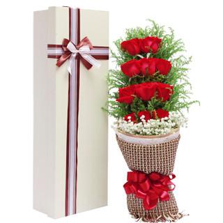 爱侣 鲜花速递11朵红玫瑰鲜花礼盒同城送花生日礼物鲜花全国北京上海南京合肥苏州武汉南昌花店送花