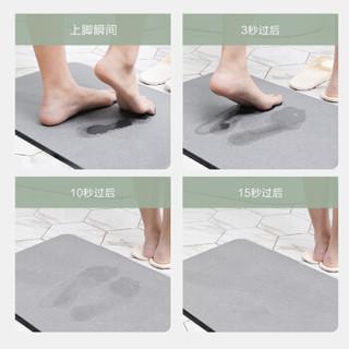 FOOJO地垫 硅藻土浴室垫 吸水硅藻泥地垫防滑门垫脚垫 39*60cm苍穹灰