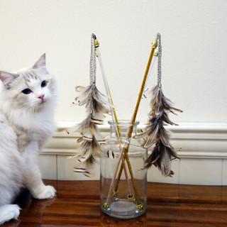 田田猫 透明杆 复古羽毛逗猫棒猫玩具猫用品