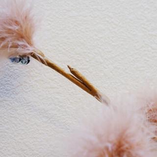 田田猫 米白色 仿树枝羽毛逗猫棒猫玩具猫用品