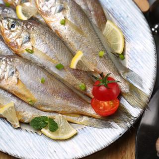 老鱼的鱼 舟山野生小黄鱼 400g/袋 舟山原产地 烧烤