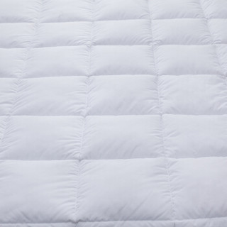 艾维(I-WILL)冬被子被芯 加厚保暖亲肤冬被被子床上用品双人200*230cm羽丝绒冬被 加厚