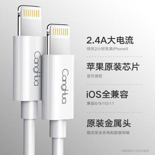苹果官方MFI认证 1.2米 苹果数据线Xs Max/XR/X/8/7/6s 手机快充电器线USB电源线 适iphone/ipad 仓华原装r01