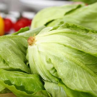 京觅 京觅优选 绿叶生菜 色拉5号 约100g (盒)植物工厂水培蔬菜
