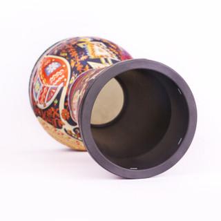 摩里恩 molien 非洲鼓 彩绘ABS轻体鼓成年人儿童初学者入门手鼓乐器 标10寸专业鼓