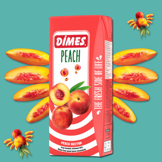 土耳其进口饮料果汁 迪美汁(DIMES) 桃汁果汁饮料200ml*9量贩分享装