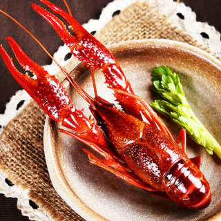 隆上记 麻辣小龙虾熟食1.5kg 4-6钱/25-38只 净虾750g 海鲜水产