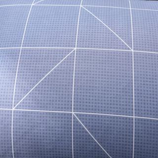 北极绒 枕套家纺 纯棉枕头套 高密度斜纹全棉枕芯套一对装 自由风格 48*74cm