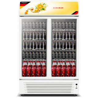 德玛仕 DEMASHI 商用双门冷藏展示柜  超市立式陈列留样水果保鲜冰饮料冷冻啤酒冰箱 LG-760BF