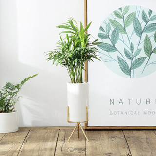 欣竹 白色陶瓷花盆绿植多肉北欧式简约花器创意花盆 金色长8CM*高14.5CM