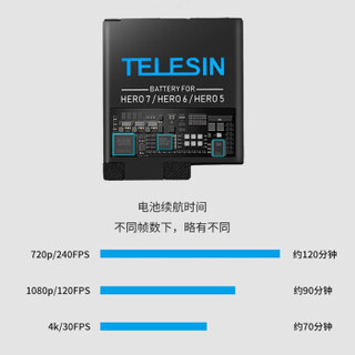 TELESIN GoPro7 收纳式两电一充套装(适用GoPro7/6/5) (白色)
