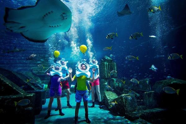 阿联酋 迪拜 棕榈岛 亚特兰蒂斯酒店 住宿+早晚餐+水族馆+水世界门票