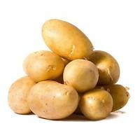 城市园丁 山东特产荷兰土豆 小果2.5kg