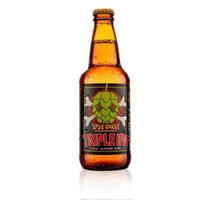 美国进口精酿 迷失海岸 (LOST COAST) 海鲸三倍IPA啤酒355ml*6瓶