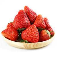 农家新语 丹东99红颜奶油草莓3斤 新鲜现摘水果礼盒装 顺丰空运
